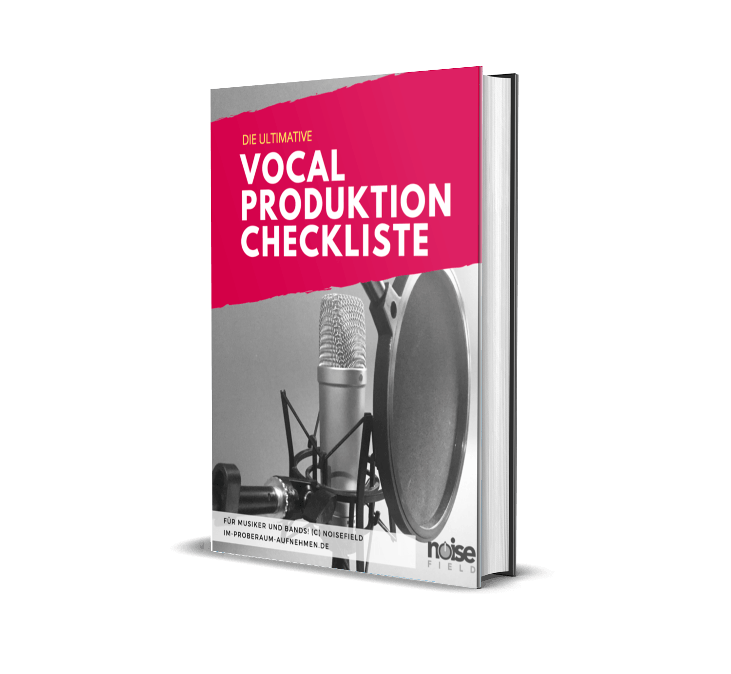 Vocal Checkliste